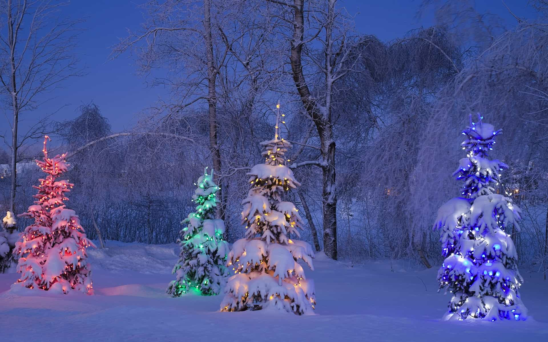 ... of winter and christmas themes for windows 7 published by microsoft